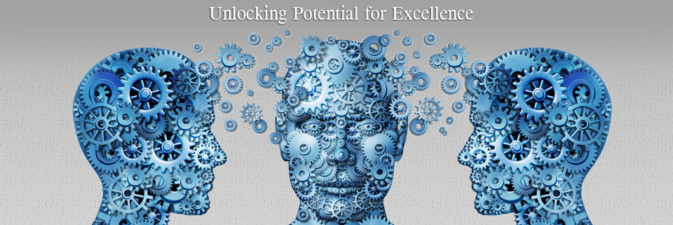 unlocking potential excellence